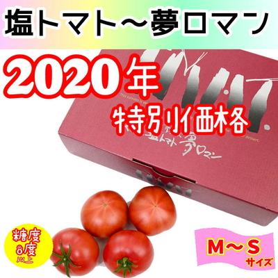 ★2020年特別価格 塩トマト ~夢ロマン~ 1kg / M~S (12~18玉)
