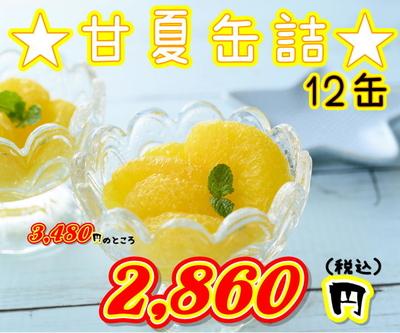 ★5周年記念価格 甘夏みかん 12缶入り★