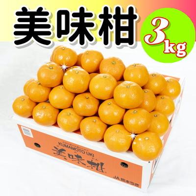 ★美味柑3kg(赤秀S)★10月中旬より販売開始