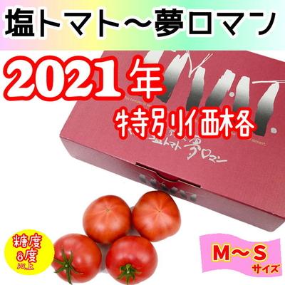 ★2021年くまもと塩トマト ~不知火夢ロマン~ 1kg / M~S (12~18玉)
