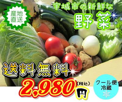 ★野菜の詰合せセット★ 6品~8品