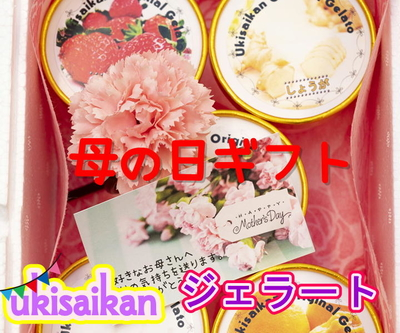 【予約販売】宇城彩館オリジナルジェラート母の日ギフト