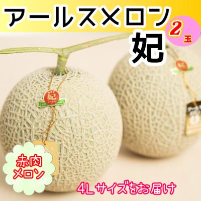 ★【予約販売】赤肉アールスメロン2玉(4L)