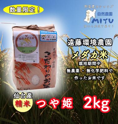 仙台産 遠藤環境農園 めだか米 精米 つや姫 2kg