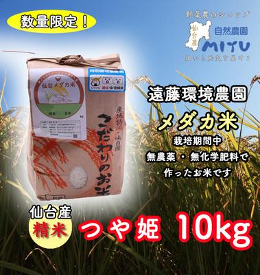 仙台産 遠藤環境農園 めだか米 精米 つや姫 10kg