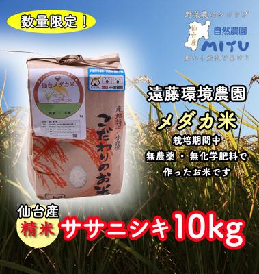仙台産 遠藤環境農園 めだか米 精米 ささにしき 10kg
