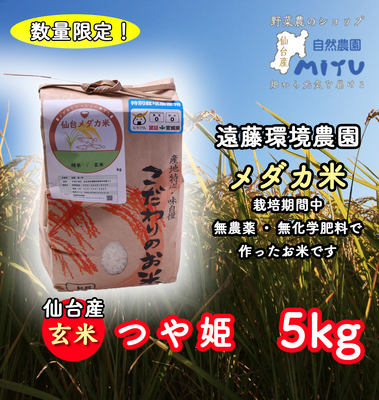 仙台産 遠藤環境農園 めだか米 玄米 つや姫 5kg