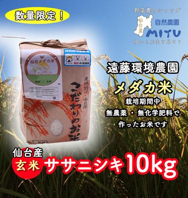 仙台産 遠藤環境農園 めだか米 玄米 ささにしき 10kg