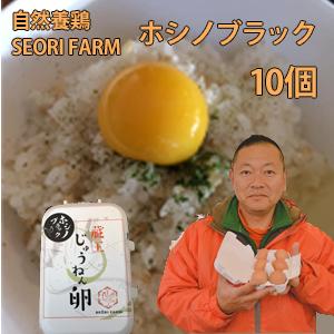 宮城県産 セオリファーム 自然養鶏の卵 ホシノブラック 10個