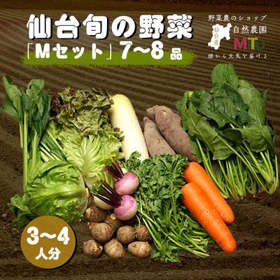 仙台旬の野菜セット(M)
