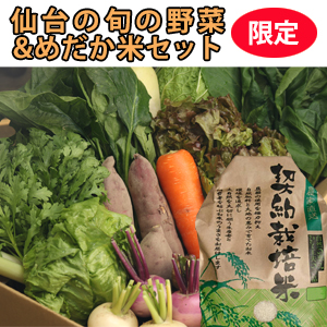 仙台旬の野菜+お米セット