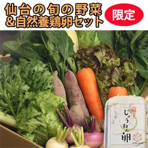 仙台旬の野菜+卵セット