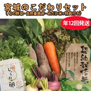 CSA(地域支援型農業)版 野菜+卵+お米セット 年12回発送