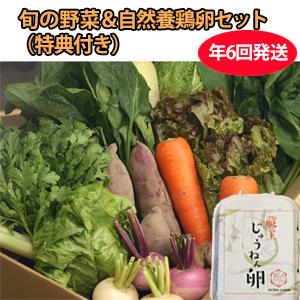 CSA(地域支援型農業)版 野菜+卵セット 年6回発送