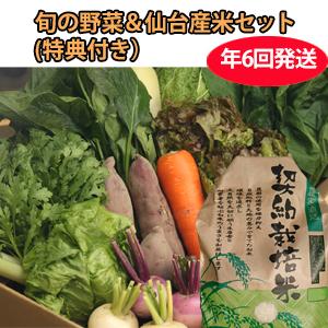 CSA(地域支援型農業)版 野菜+お米セット 年6回発送