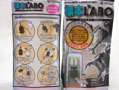 ■かんたん昆虫標本キット(標本LABO)