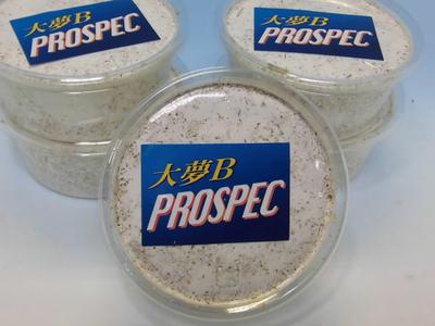 ■大夢Bプロスペック ウェイヴ カップ200