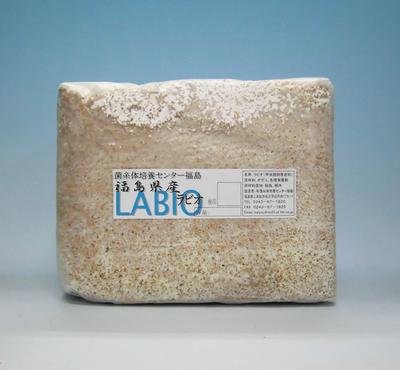 LABIO(ラビオ)ブロック B100