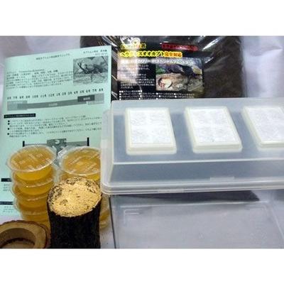 ■カブトムシ成虫飼育産卵セット M