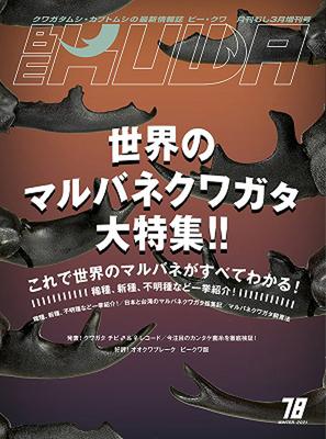 BE-KUWA No.78 世界のマルバネクワガタ大特集