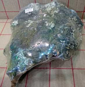 バージンコルク片1: size40x17cm