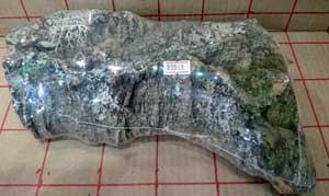 バージンコルク片8: size25x14cm