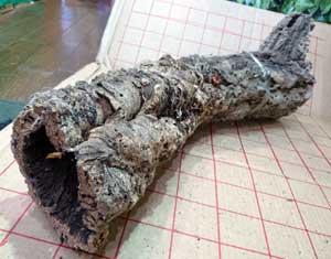 バージンコルクパイプp  長58x15cm