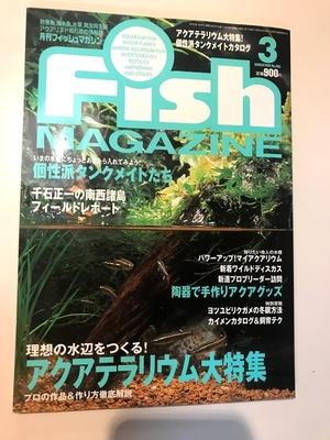 月刊フィッシュマガジン No396 1999/03