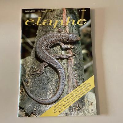 elaphe 3/1999