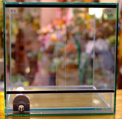 ビバリウム用自然通気式オールガラスガラスケース