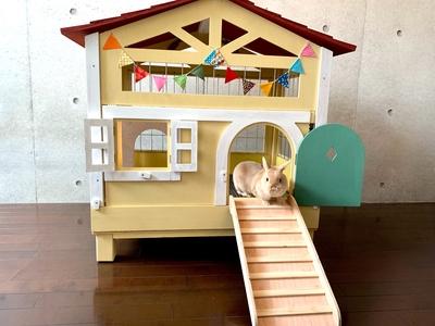 【新価格】北欧デザインペットハウス