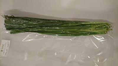 【お取り寄せ商品】生牧草 イタリアンライグラス