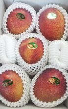 ご家庭用完熟アップルマンゴー2kg 送料無料