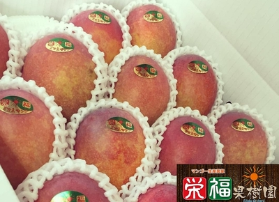 ご家庭用完熟アップルマンゴー4kg 送料無料