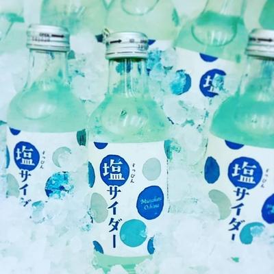 すっぴん塩サイダー(24本/1箱)