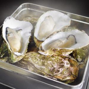 752 赤崎産牡蠣カンカン焼きセット