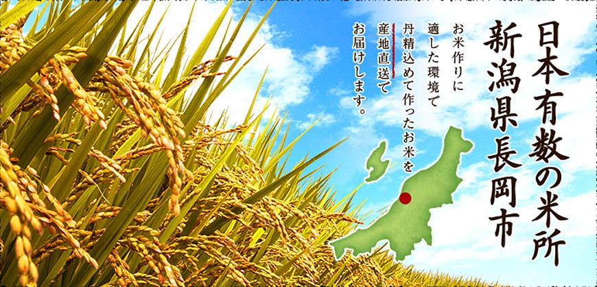 日本有数の米所 新潟県長岡市