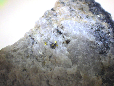 JKM46 自然金とテルル蒼鉛鉱・Native Gold&Tellurobismuthite 宮城県大谷鉱山