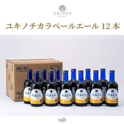 【12本セット】ユキノチカラ ペールエール