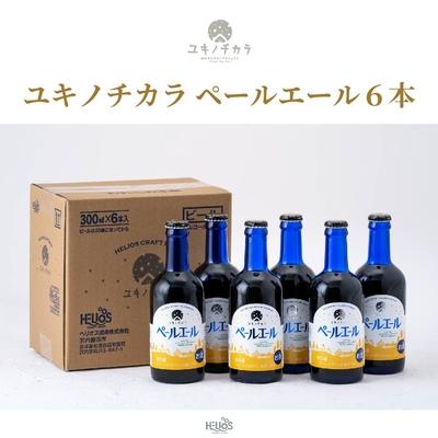 【6本セット】ユキノチカラ ペールエール
