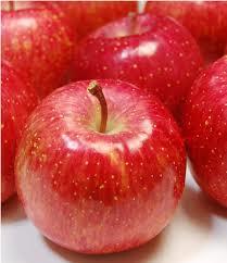 日本一ブランドりんご 和合平産サンふじりんご 約5kg(18~16個入)