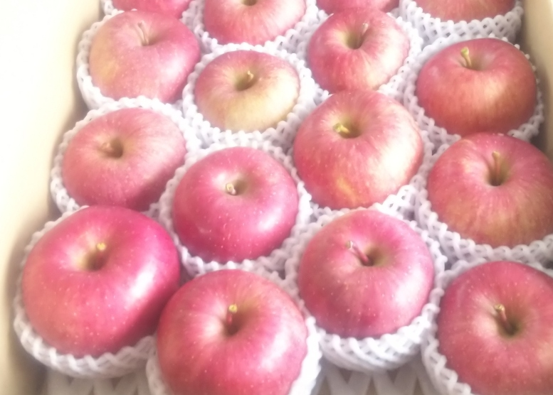 最高級ブランド和合平産 サンふじりんご