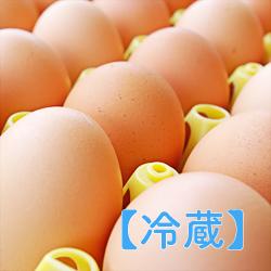 【冷蔵】学術用有精卵 90個