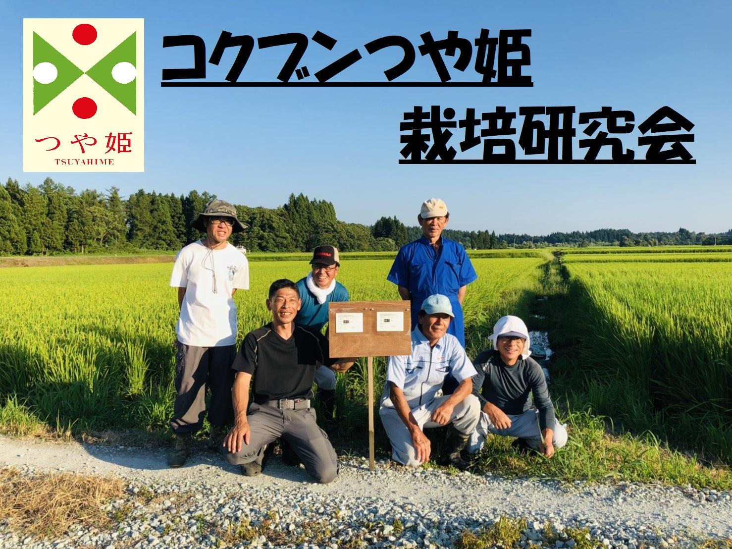 コクブンつや姫栽培研究会の写真