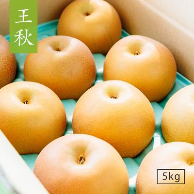 王秋(おうしゅう)【5kg】