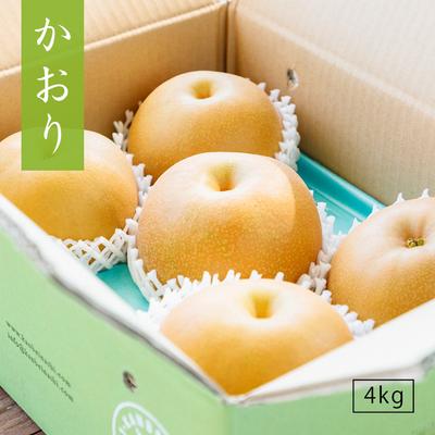 かおり【4kg】