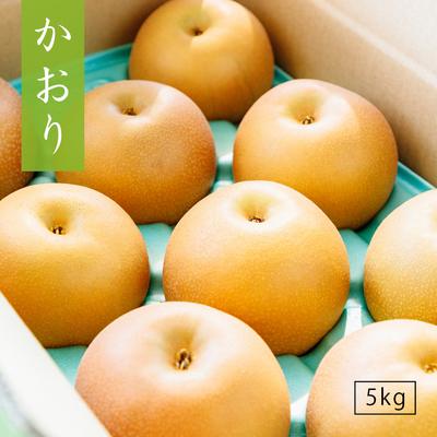 かおり【5kg】