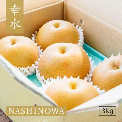 NASHINOWA 幸水【3kg】