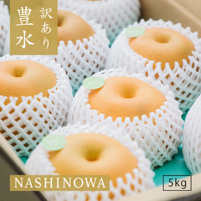 NASHINOWA 訳あり梨 豊水【5kg】