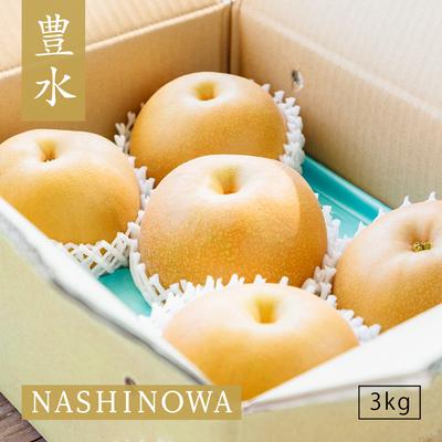 NASHINOWA 豊水【3kg】